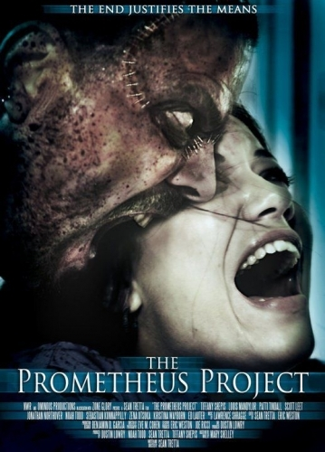 Постер к сериалу Синдром Франкенштейна / The Frankenstein Syndrome (2010)  DVDRip