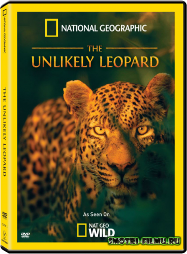 ������ � ������� National Geographic: ��������� ������� / The Unlikely Leopard (2012) HDTVRip