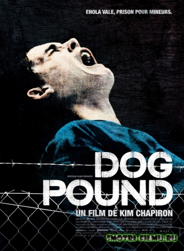 Загон для собак / Dog Pound (2009) HDRip