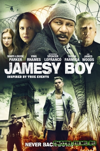 Джеймси / Jamesy Boy (2014) WEB-DLRip